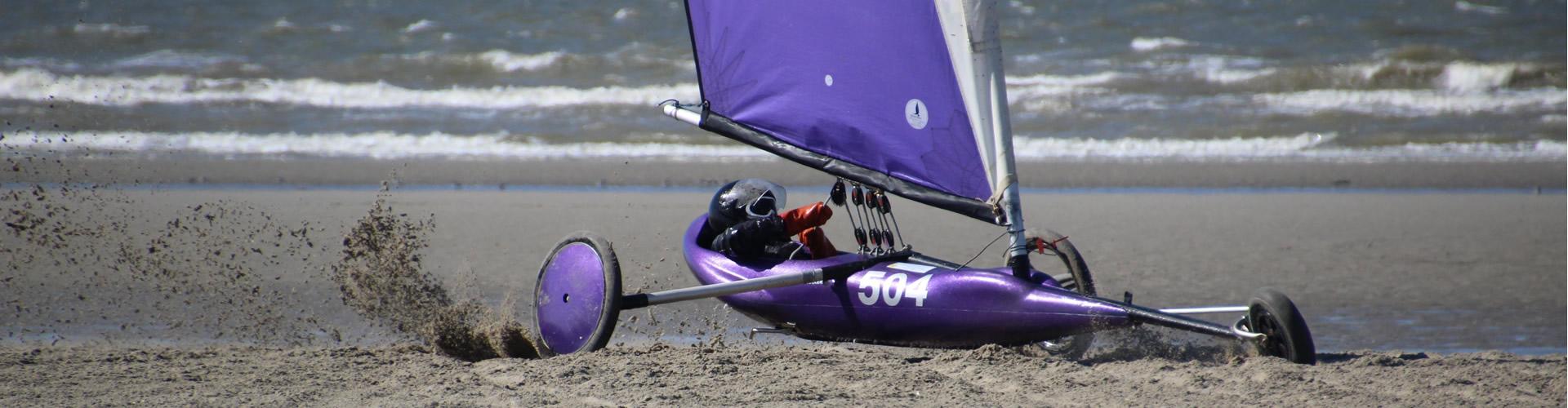 seagull_char_voile_slide_8
